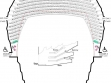 State Theatre seating plan circle