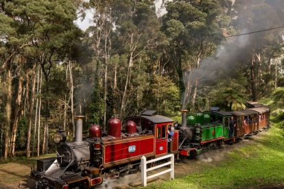 Puffing-Billy-42