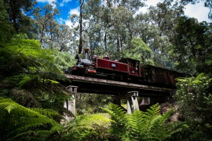 Puffing-Billy-43