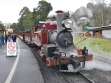 puffing-billy 06