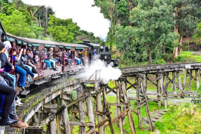 puffing-billy 08