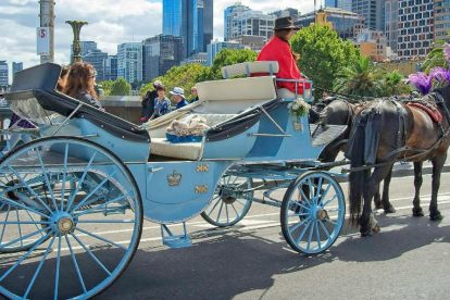 Horse Carriage Tours 01
