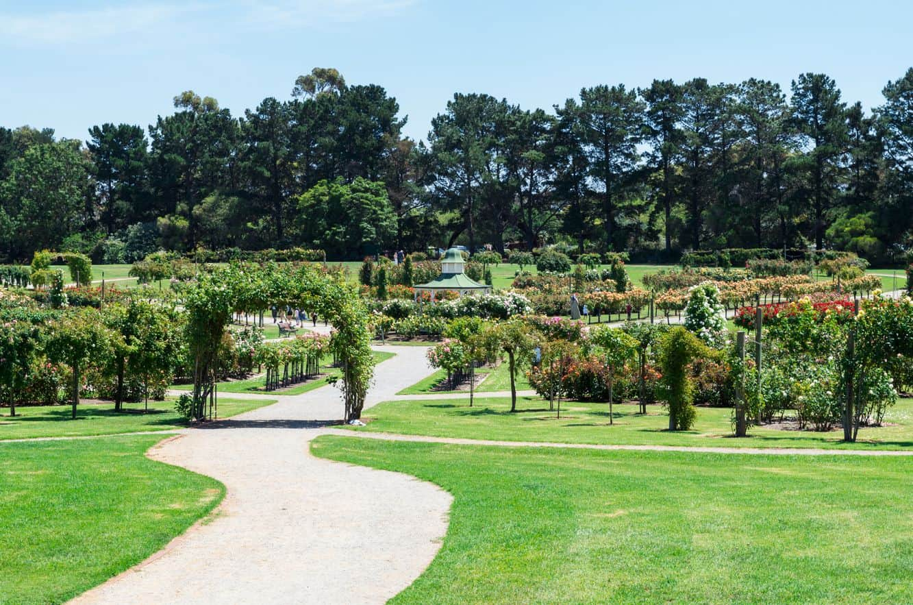 Victoria State Rose Garden Map Opening Hours Werribee