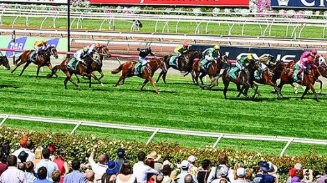 Stakes Day