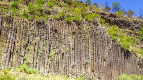Organ Pipes National Park 01