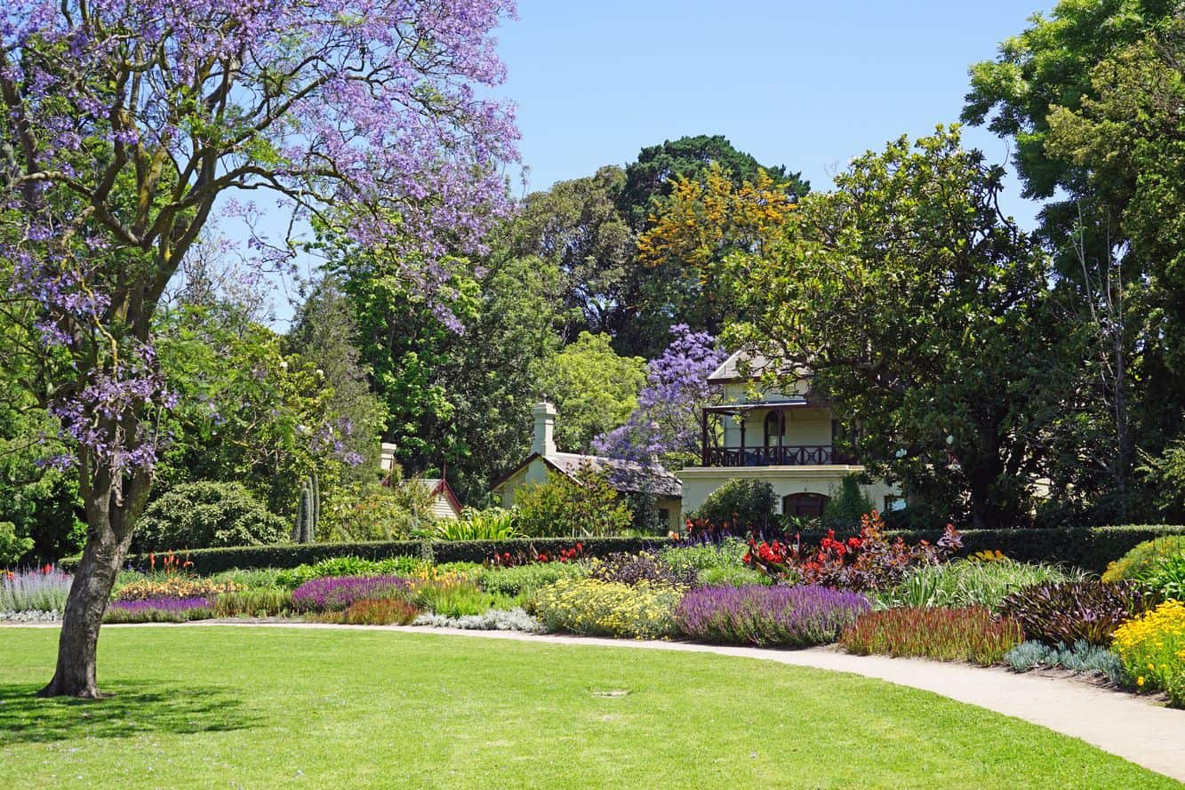 Royal Botanic Gardens 07