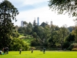 Royal Botanic Gardens 10