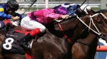 The Spring Racing Carnival
