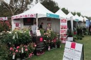 State Rose And Garden Show